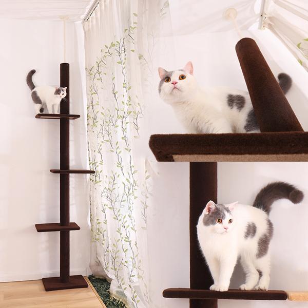 深棕色3层落地猫爬架可休息,睡觉,锻炼,适用于各类猫