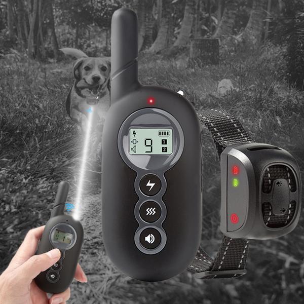 PS3宠物训狗器