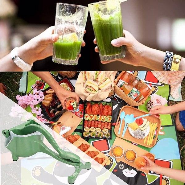 绿色榨汁机套装 【沃尔玛禁售】